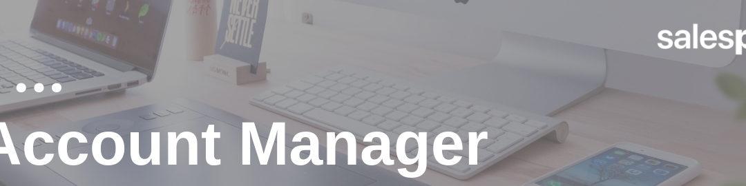 stellenbeschreibung key account manager muster